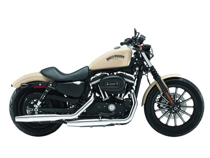 Harley - Davidson Sportster 883 - GS Africa Motorcycle Rentals and Tours