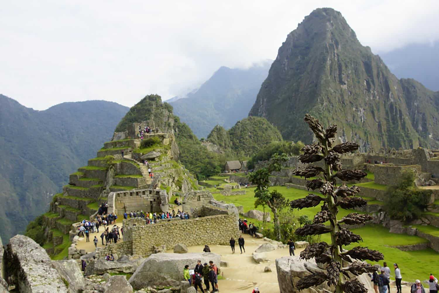 Trail of the Incas